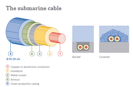 The submarine cable