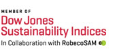 Logo Dow Jones Sustainability World Index