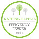Logo Natural capital - Efficiency leader - 2014