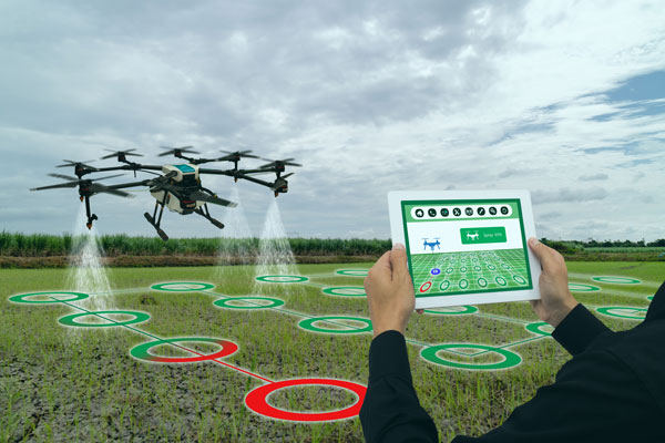Precision agriculture and drones