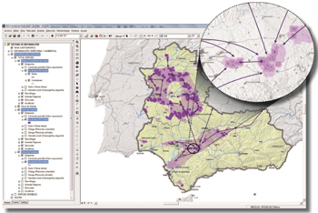 GIS image generated by the project