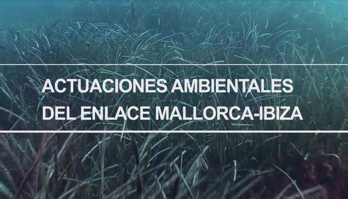 Actuaciones ambientales del enlace Mallorca-Ibiza