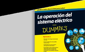 La operación del sistema electrico para Dummies