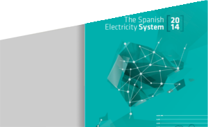 The Spanish Electricity System 2014
