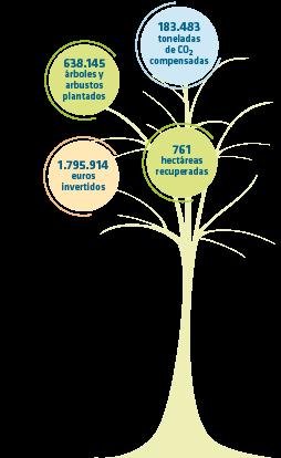 Datos globales Bosque REE: 638.145 árboles plantados, 183.483 toneladas de CO2 compensadas, 1.795.914 euros invertidos y 761 hectáreas recuperadas.