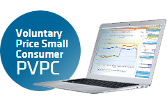 Voluntary price for the small consumer (PVPC)