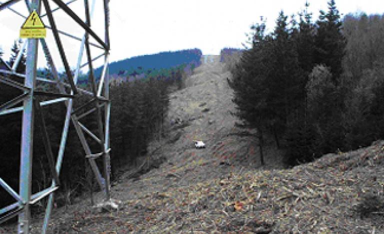 Estado de una línea tras los trabajos de tala y poda de vegetación.