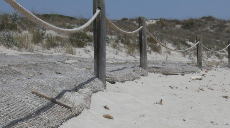 Detalle de acumulación de arena gracias al geotextil.