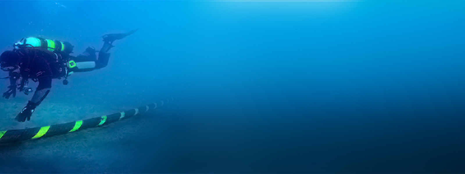 Ir a la página del proyecto Posidonia Oceánica