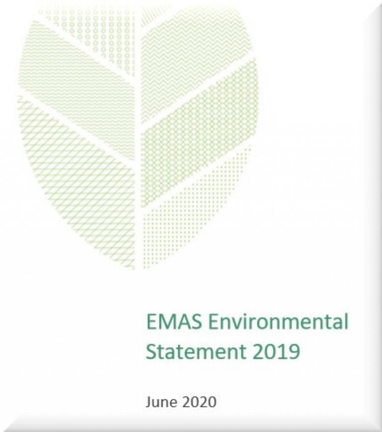 Enviromental Statement 2019