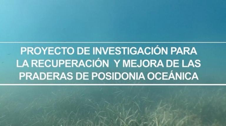 """Video """"Proyecto de investigación para la recuperación y mejora de las praderas de posidonia oceánica"""""""